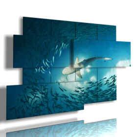 cuadros de peces modernos