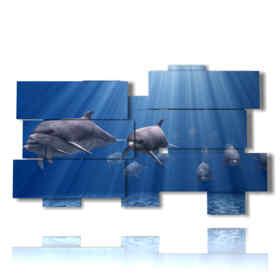 quadri sui pesci e famiglia di delfini che nuotano nell
