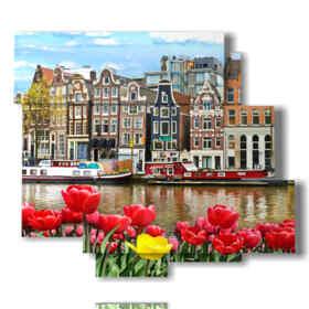 Bild mit Fotos heute Amsterdam mit Tulpen