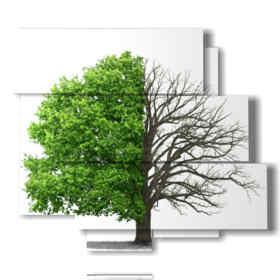 quadri alberi stilizzati senza mezze stagioni