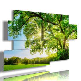 tableaux avec des arbres modernes du feuillage vert baigné de soleil