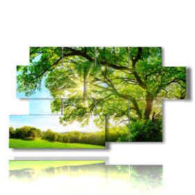 quadri con alberi moderni dalla chioma verde baciata dal sole