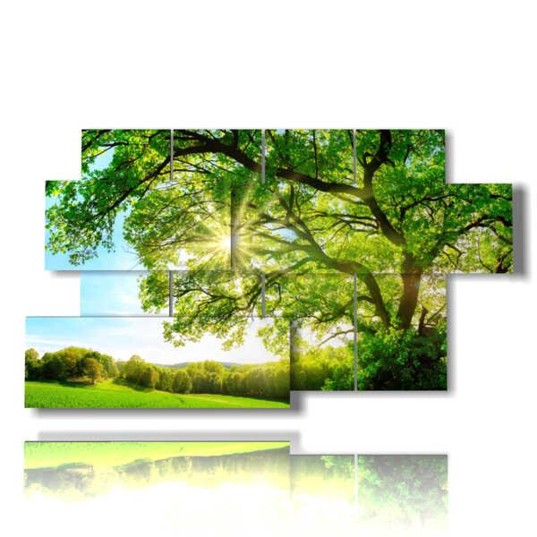 cuadros modernos con árboles de follaje verde bañada por el sol