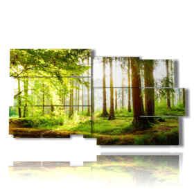 quadri con alberi autunnali nella foresta