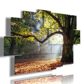 quadro alberi colorati in autunno
