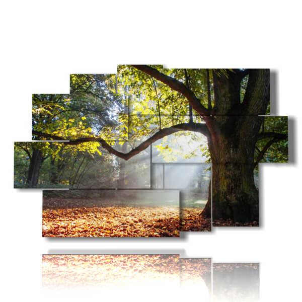 estructuras de color árboles