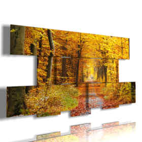 picture with photo forest in autumn