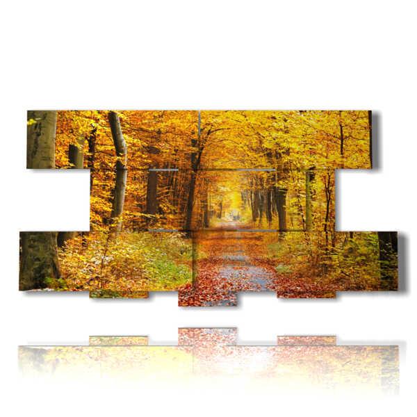 cuadros con los bosques en otoño foto