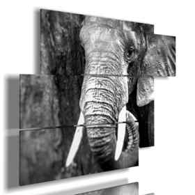 paintings by artistic photos elephants
