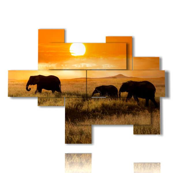 cuadros con los elefantes de fotos al atardecer