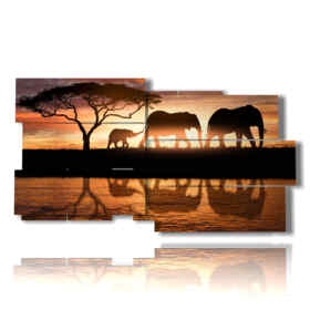 picture with family photos elephants