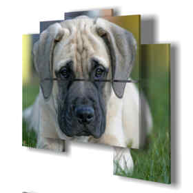 Printed picture - Tiger 01 - Multipanel and multilevel 3D. Large size