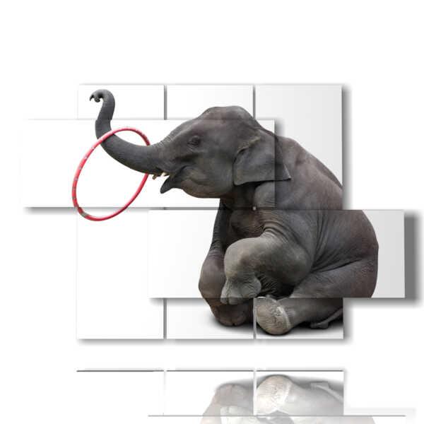 tableaux avec éléphants drôles tableaux
