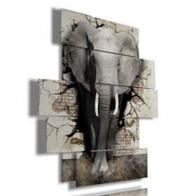 cuadro con la imagen del elefante niños