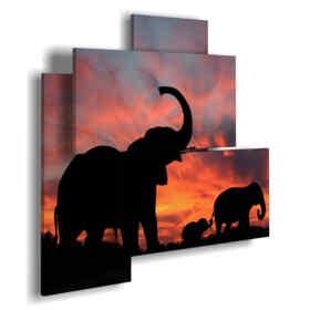 photo de profil avec des tableaux d'éléphants