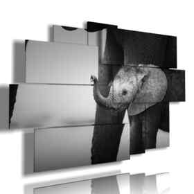 picture with elephant Dumbo photos