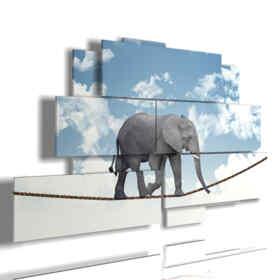 cuadros con los elefantes acróbatas de imágenes