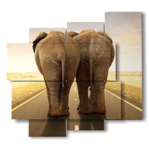 cuadro con fotografías elefantes divertidos