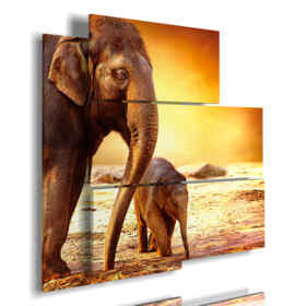 modern pictures with family elephants