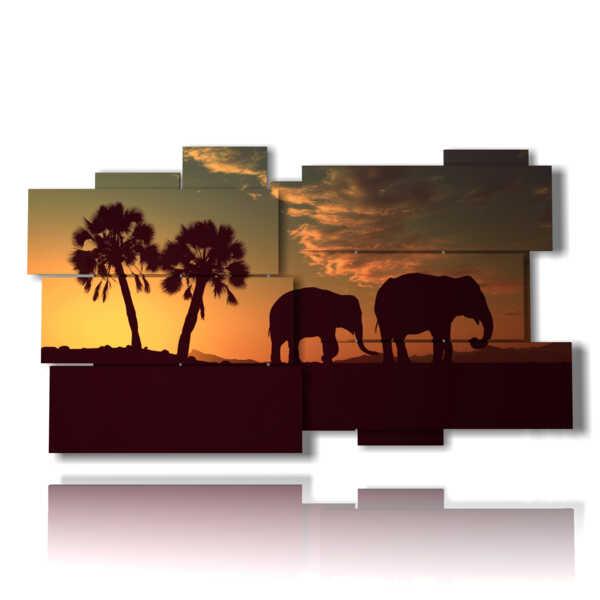 photo avec des tableaux d'éléphants