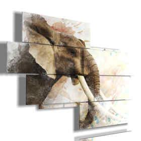 cuadro con imágenes del elefante indio