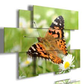 paintings on butterflies in a meadow of daisies