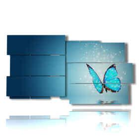 quadro con foto farfalle rare magiche