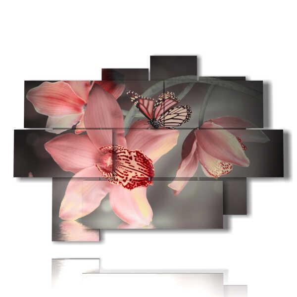 cuadros flores y mariposas