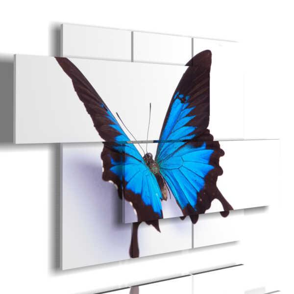 Quadri Farfalle In Rilievo Blu Su Sfondo Bianco 3d Duudaart