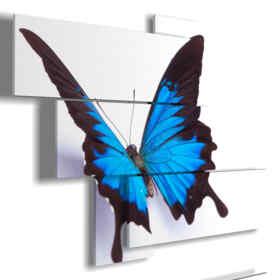 cuadros mariposas en relieve