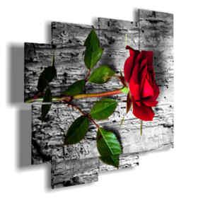 Imágenes de cuadros rosas rojas