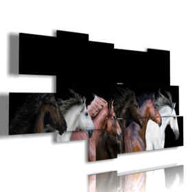 cuadros de caballos de muchos colores