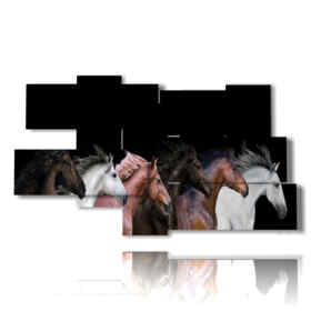 tableaux sur des chevaux de plusieurs couleurs