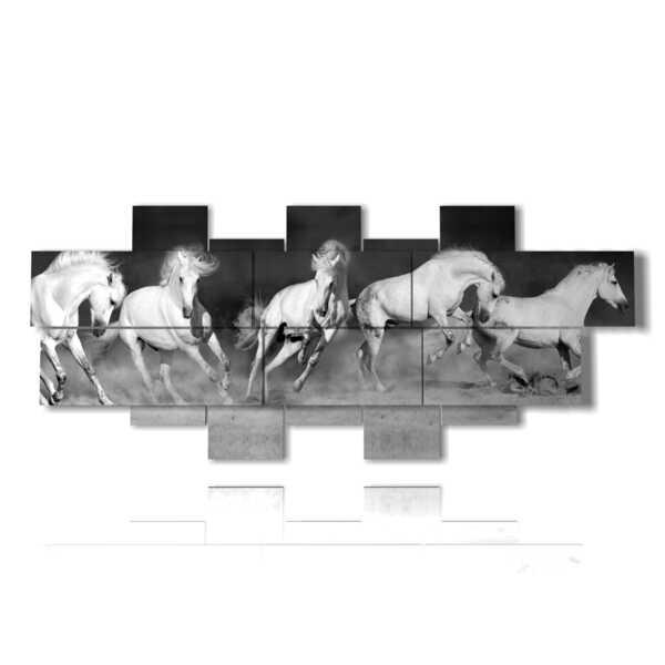 cuadros de caballos blancos sobre un fondo negro