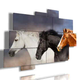 quadro di cavalli scegli tu il tuo preferito
