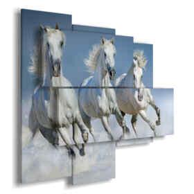 cuadro caballos blancos salvajes