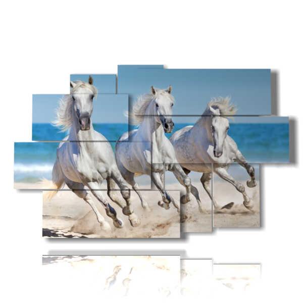 tableaux des chevaux blancs sur la plage