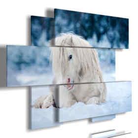 cuadro caballo blanco tumbado en la nieve