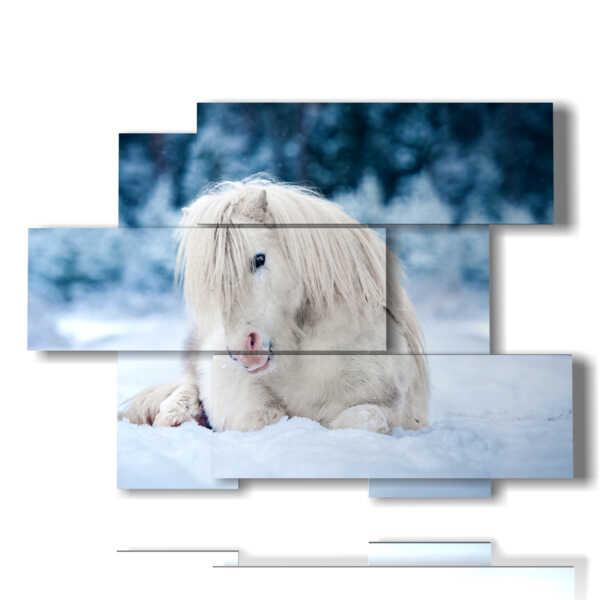 quadro cavallo bianco disteso nella neve