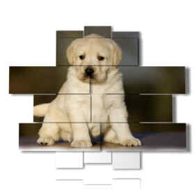 modern painting Puppy 03