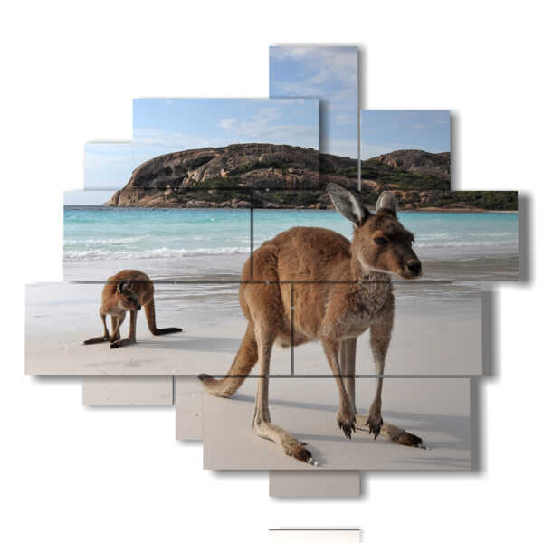 quadri animali moderni in Australia