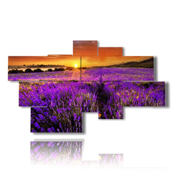 tableaux de fleurs de lavande embrassée par un coucher de soleil spectaculaire
