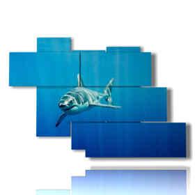 quadro con pesci dipinti squalo in arrivo
