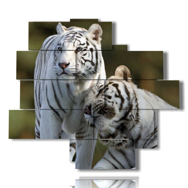 tableaux tigre