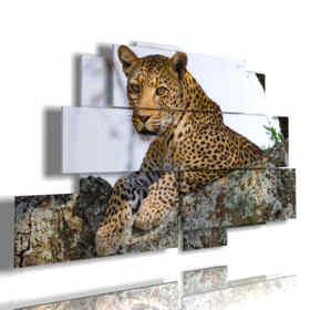 quadro con animali africani