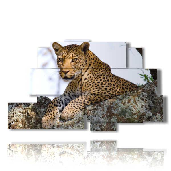 Bild mit afrikanischen Tieren