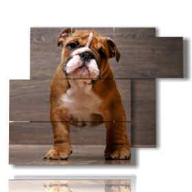 Tableau moderne chien mignon