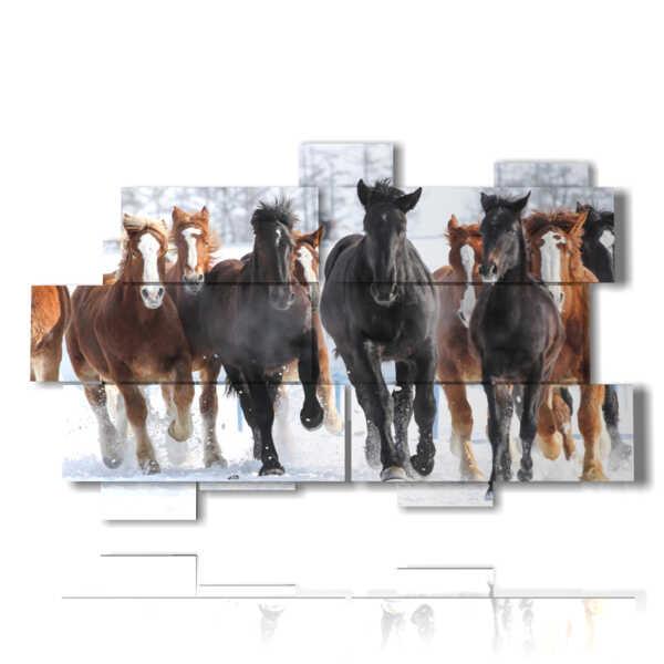 quadri cavalli in corsa sulla neve di inverno