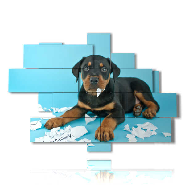 quadro cane moderno che gioca con la carta
