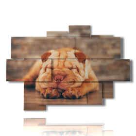 Tableau moderne avec la tableau de chien pendant le sommeil